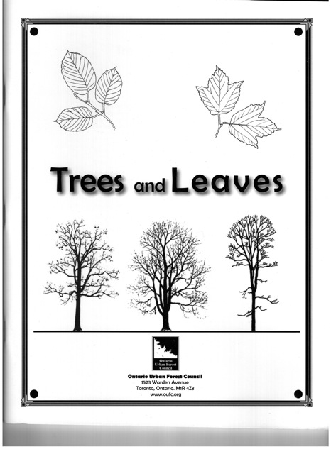 Trees & Leaves Cover